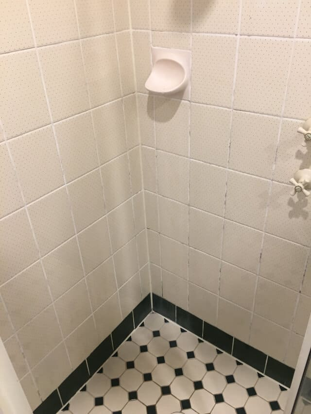 before shower regrout porcelain tessellated tiles