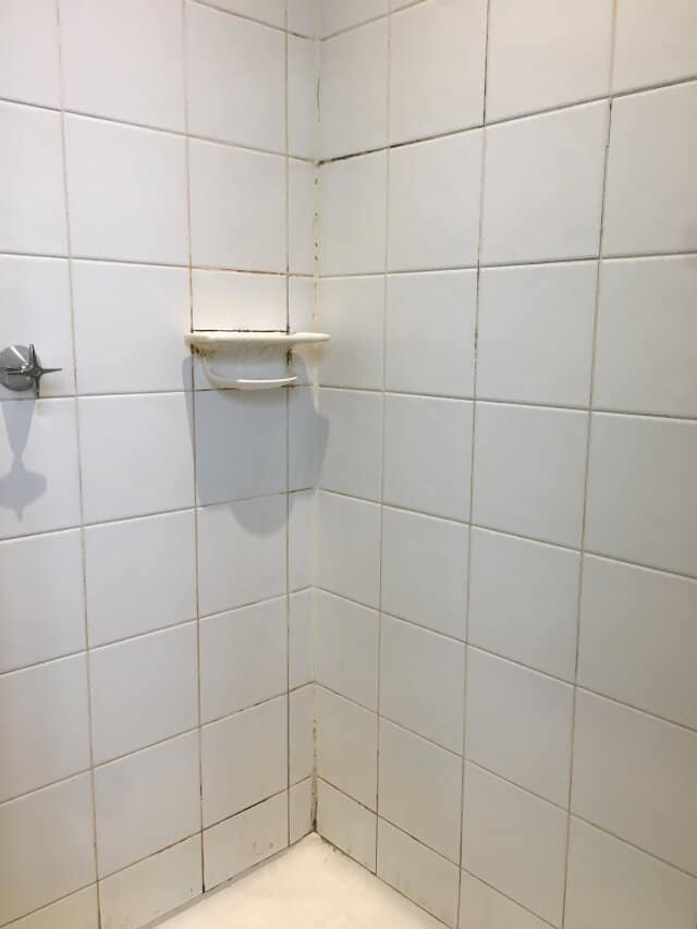 shower restoration before