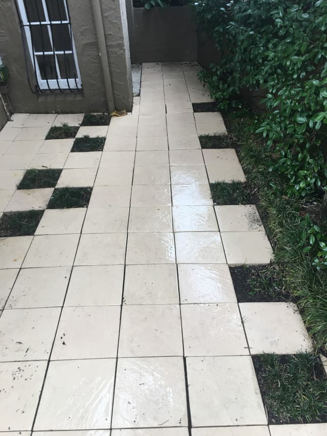 after path outdoors pavers clean cement concrete