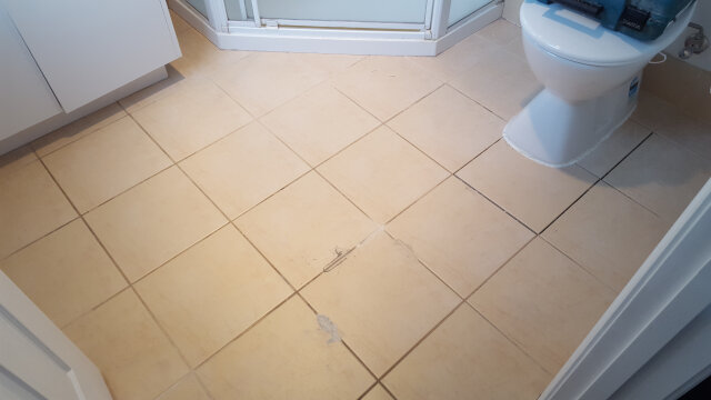 bathroom floor regrout before