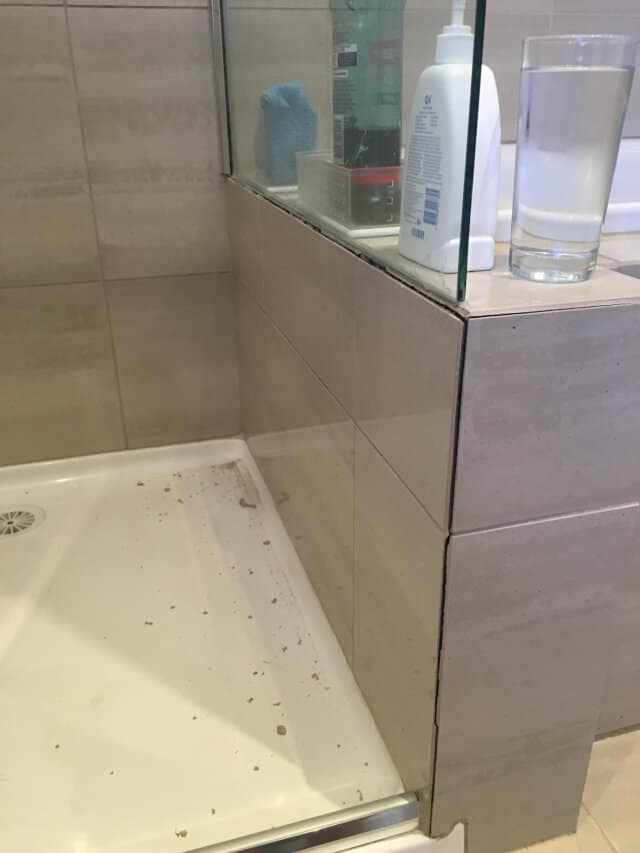 before shower silicone